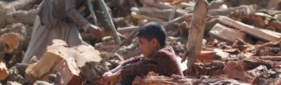 YEMEN'S HELL: GERMAN WEAPONS FOR ARABIA, FOR AL-QAIDA AND FOR AMERICAN MERCENARIES