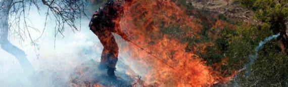 КАК ЕГИПЕТ И ИЗРАИЛЬ УНИЧТОЖАЮТ ПАЛЕСТИНУ